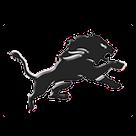 Blanchard High School logo