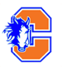Chester Academy High School logo