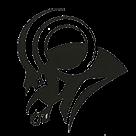 Woodrow Wilson High School  logo