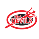 Dawson County High School logo