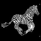 Groton School logo