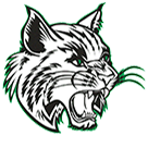 Thayer High School logo