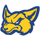 Nazareth High School logo
