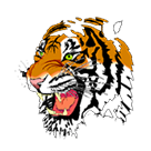 Webster High School logo