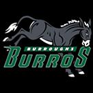Burroughs High School - Ridgecrest logo