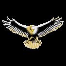 Dunlap High School logo