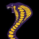 Fountain Lake High School logo