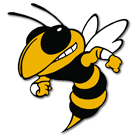 Lookout Valley High School logo