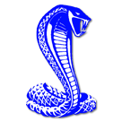 Delete Me - Duplicate school logo