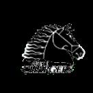 Arete Preparatory Academy logo
