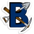 Bingham High School logo
