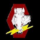 Chancellor High School logo