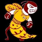 Brookville High School logo