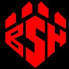 Boiling Springs High School logo