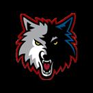 North Sevier High School logo