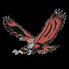 Hudson High School logo