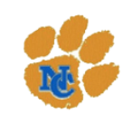 Newton County High School logo