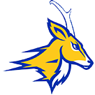 Whiteface High School logo