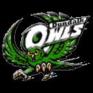 Dundalk High School logo