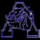 Alliance High School logo