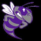 Deep Creek High School logo