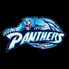Page County High School logo