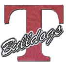 Terry High School logo