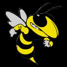 Williamstown High School logo