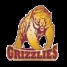 Grace Christian High School logo