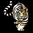 Choctaw County High School logo