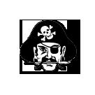 Paint Rock Valley High School logo