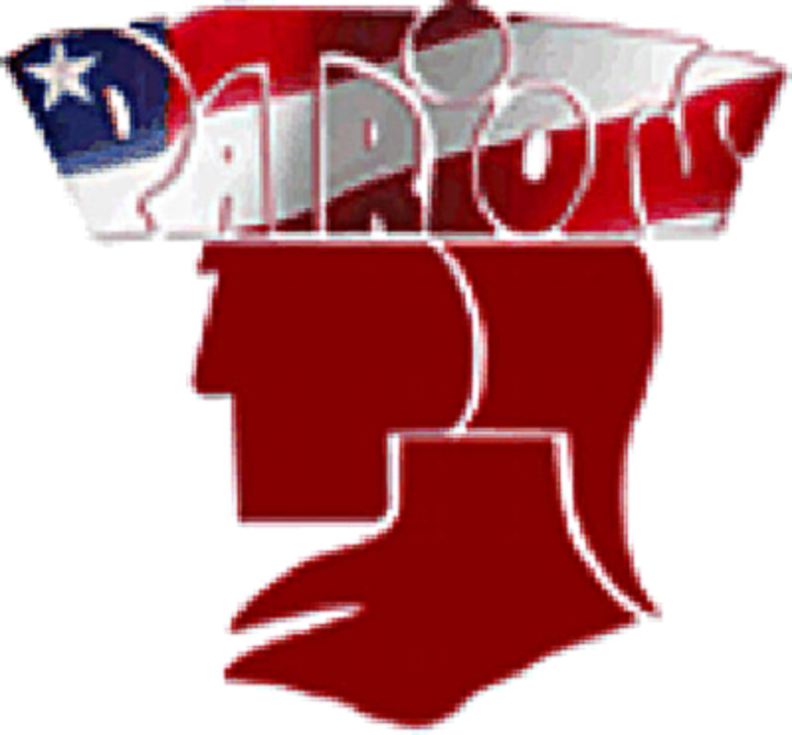 Albemarle High School logo