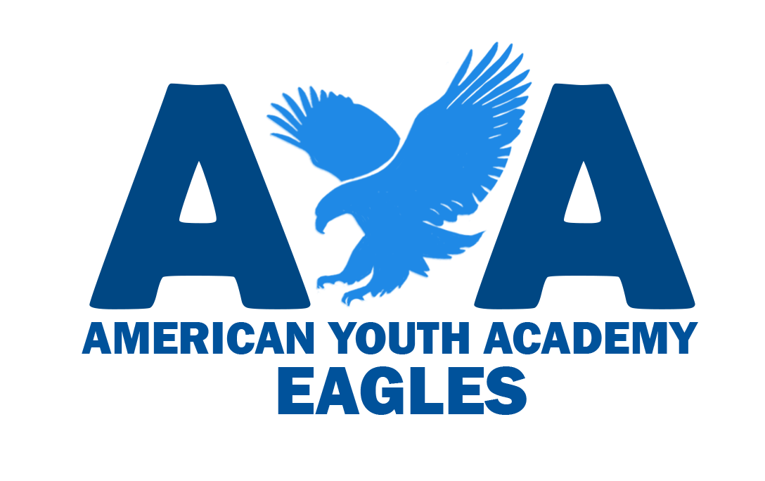 American Youth High School logo