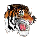 Newton North High School logo