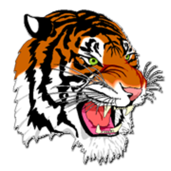 Benton Harbor High School logo