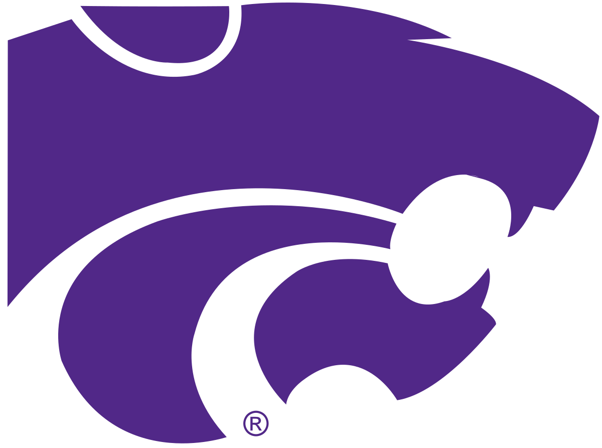 Big Sandy High School - Dallardsville logo