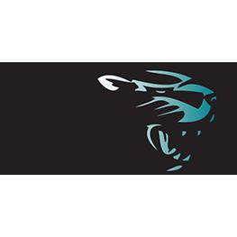 Bonney Lake High School logo