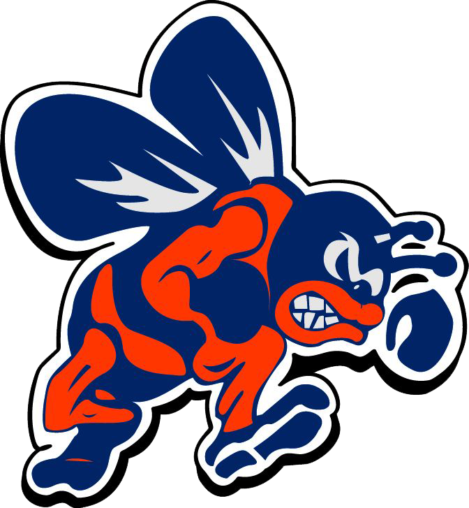 Bridgman High School logo