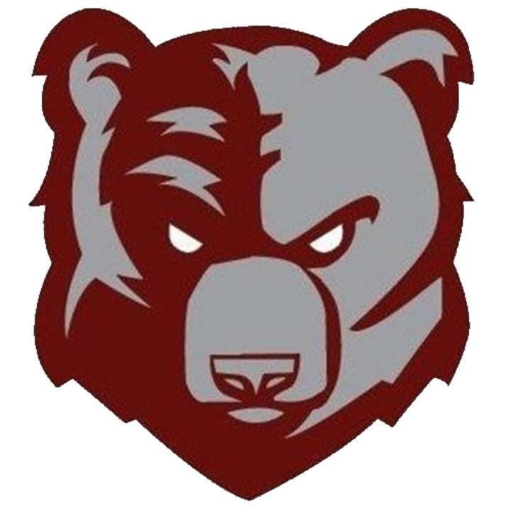 Broadneck High School logo