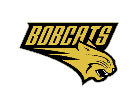 Buchholz High School logo