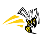 Camas Valley High School logo