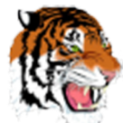 Elida High School logo