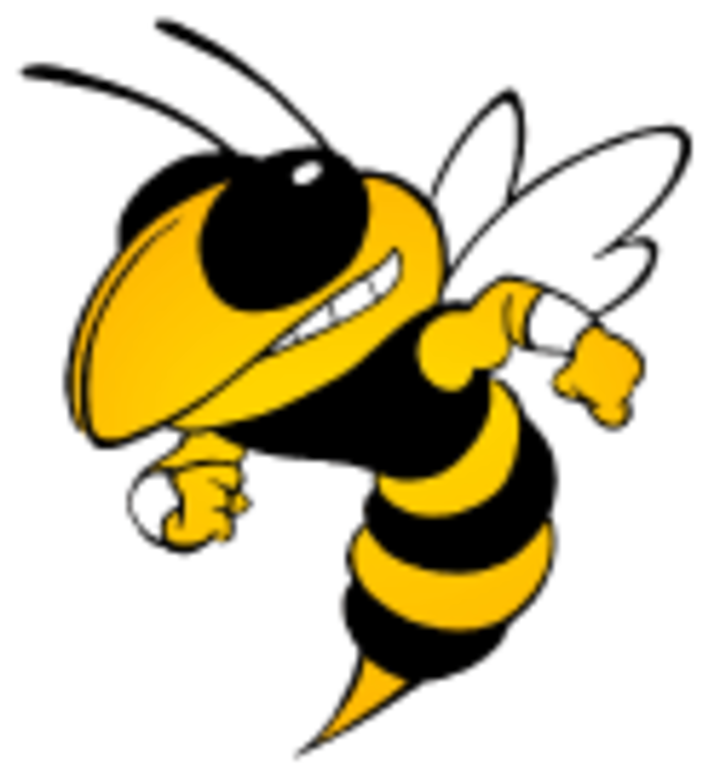 Calhoun High School logo