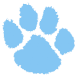 Camden County High School logo