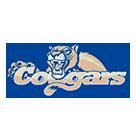 Carroll High School logo