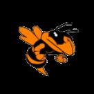 Advance High School logo
