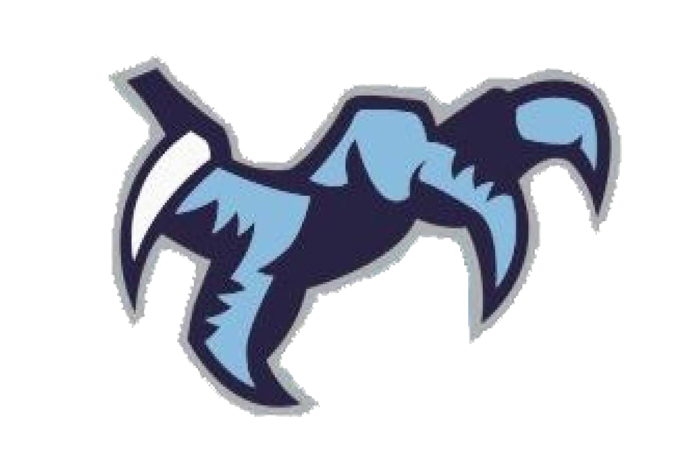 Chapin High School logo