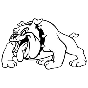 Clay County High School logo