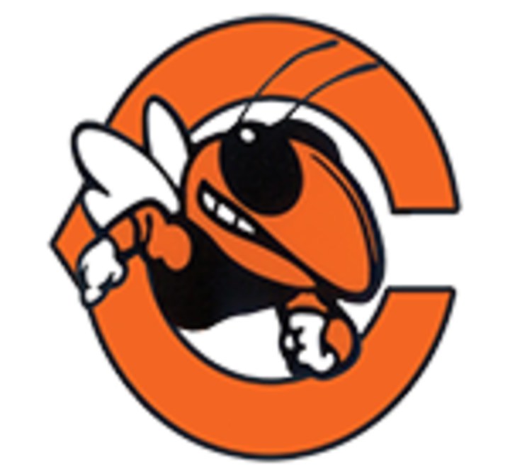 Coalfield High School logo