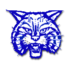 McNairy Central High School logo